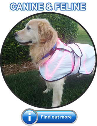 Spectra Therapy Canine Products